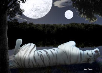 Moonbathing1000